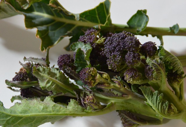 How To Cook Purple Sprouting Broccoli Seasonal Tasty Vegetable
