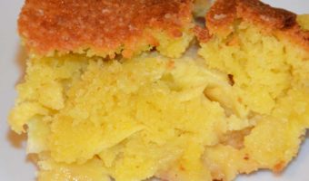 portion of apple with sponge on top