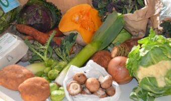 selecton of fresh vegetables - squash, leek, cabbage, mushrooms
